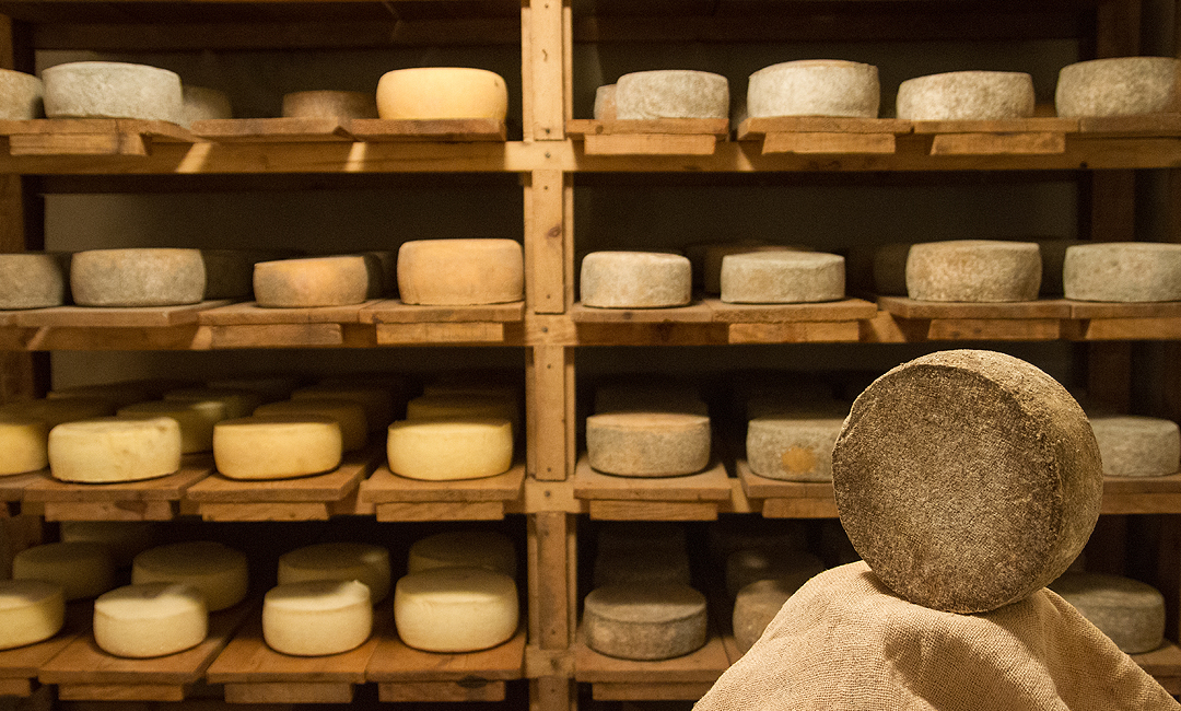 Chambre froide fromagerie